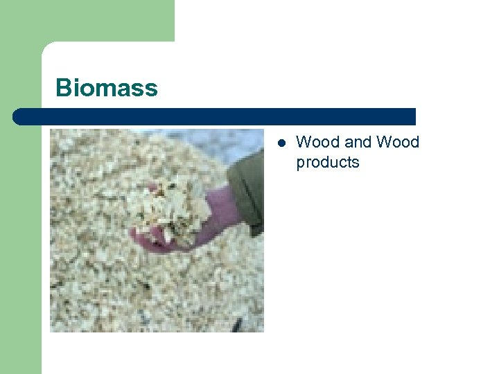 Biomass l Wood and Wood products