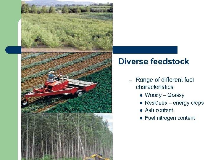 Disadvantages Diverse feedstock – Range of different fuel characteristics l l Woody – Grassy