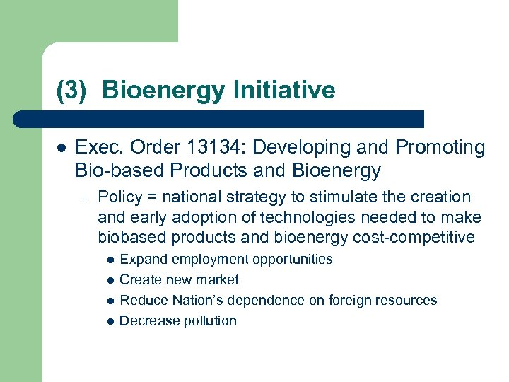 (3) Bioenergy Initiative l Exec. Order 13134: Developing and Promoting Bio-based Products and Bioenergy