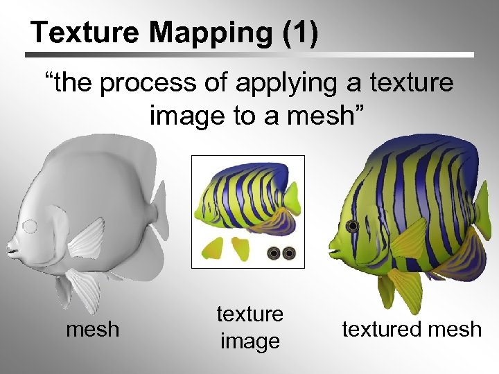 """Texture Mapping (1) """"the process of applying a texture image to a mesh"""" mesh"""