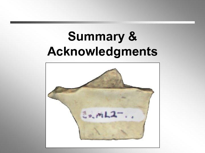 Summary & Acknowledgments