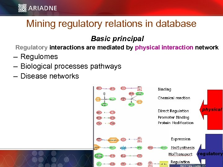 Mining regulatory relations in database Basic principal Regulatory interactions are mediated by physical interaction
