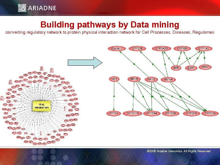 Building pathways by Data mining converting regulatory network to protein physical interaction network for