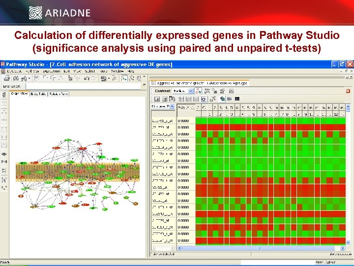 Calculation of differentially expressed genes in Pathway Studio (significance analysis using paired and unpaired