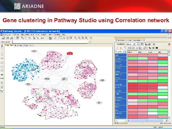 Gene clustering in Pathway Studio using Correlation network © 2006 Ariadne Genomics. All Rights