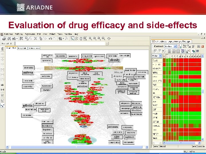 Evaluation of drug efficacy and side-effects © 2006 Ariadne Genomics. All Rights Reserved. 44