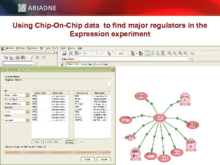 Using Chip-On-Chip data to find major regulators in the Expression experiment © 2006 Ariadne