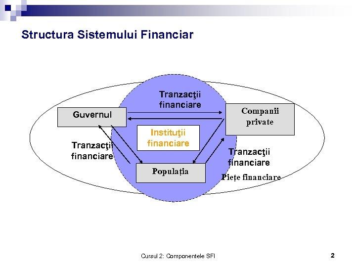 Structura Sistemului Financiar Guvernul Tranzacţii financiare Instituţii financiare Populaţia Cursul 2: Componentele SFI Companii