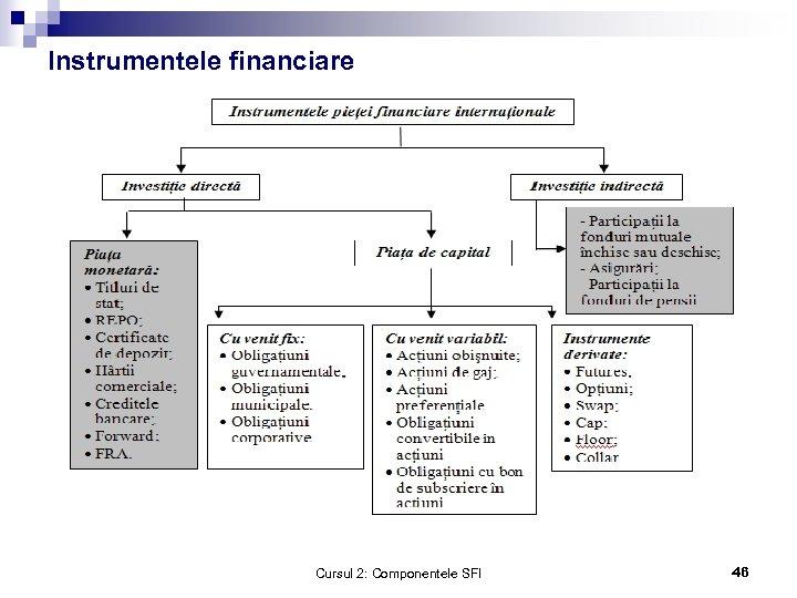 Instrumentele financiare Cursul 2: Componentele SFI 46