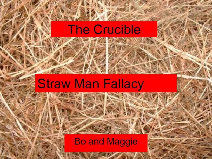 The Crucible Straw Man Fallacy Bo and Maggie