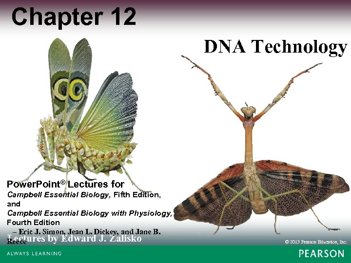 Chapter 12 DNA Technology Power. Point® Lectures for Campbell Essential Biology, Fifth Edition, and