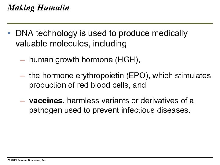 Making Humulin • DNA technology is used to produce medically valuable molecules, including –