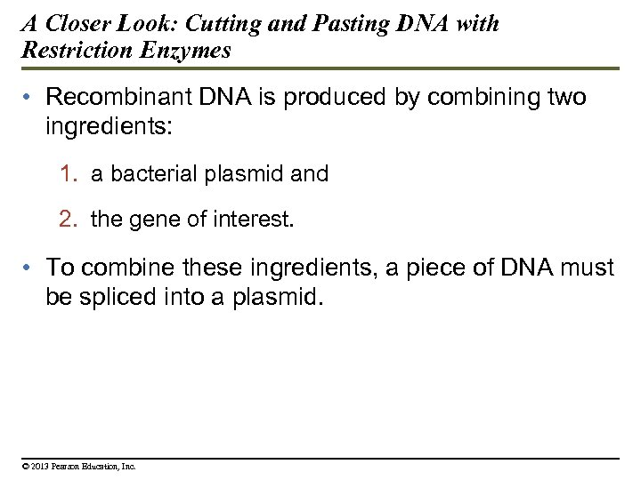 A Closer Look: Cutting and Pasting DNA with Restriction Enzymes • Recombinant DNA is