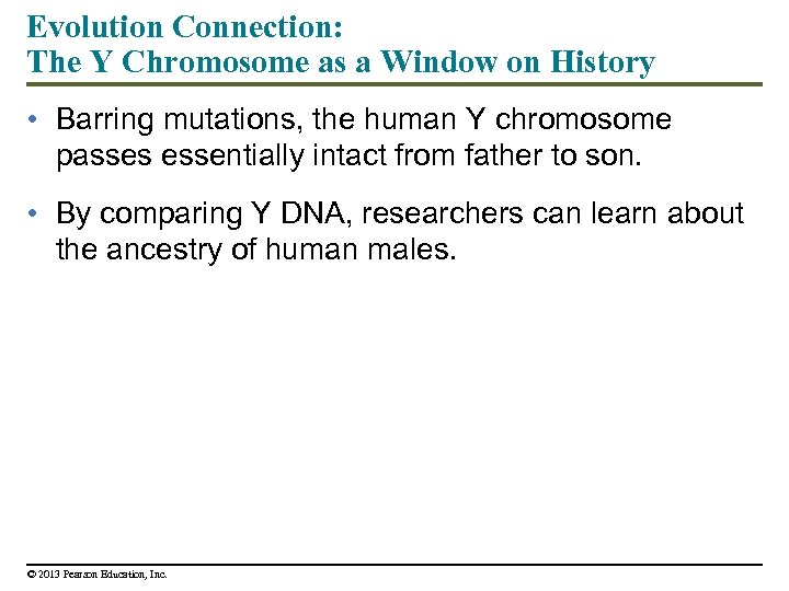 Evolution Connection: The Y Chromosome as a Window on History • Barring mutations, the