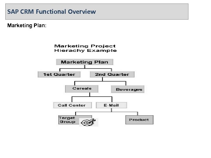SAP CRM Functional Overview Marketing Plan: