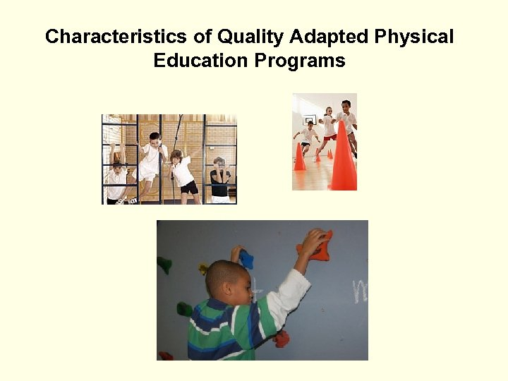 Characteristics of Quality Adapted Physical Education Programs