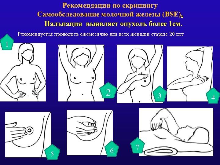Рекомендации по скринингу Самообследование молочной железы (BSE). Пальпация выявляет опухоль более 1 см. Рекомендуется