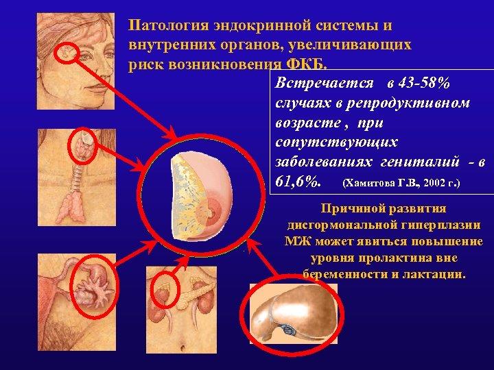 Патология эндокринной системы и внутренних органов, увеличивающих риск возникновения ФКБ. Встречается в 43 -58%