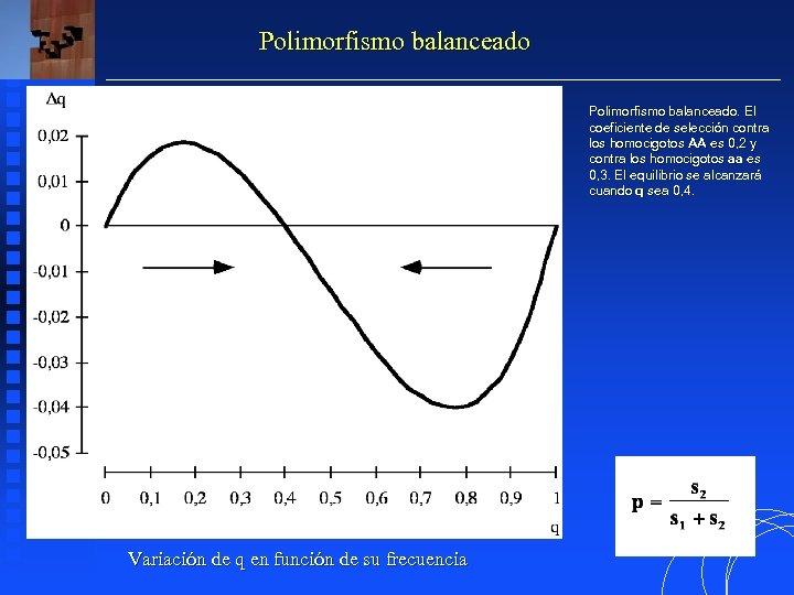 Polimorfismo balanceado. El balanceado. coeficiente de selección contra los homocigotos AA es 0, 2