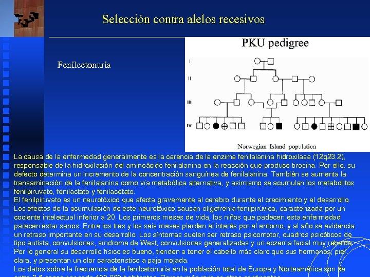 Selección contra alelos recesivos Fenilcetonuria La causa de la enfermedad generalmente es la carencia