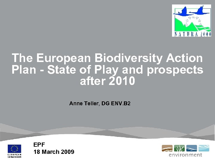 The European Biodiversity Action Plan - State of Play and prospects after 2010 Anne