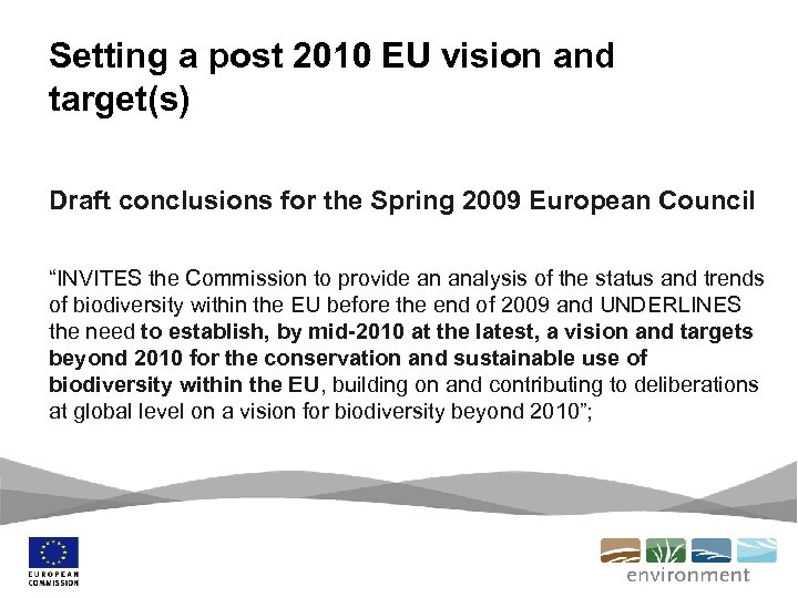 Setting a post 2010 EU vision and target(s) Draft conclusions for the Spring 2009