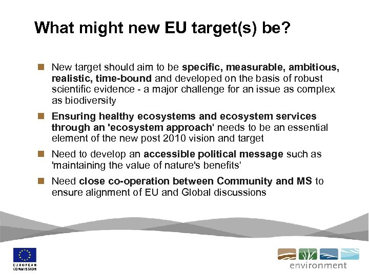What might new EU target(s) be? n New target should aim to be specific,