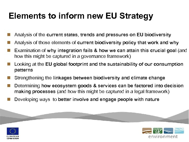 Elements to inform new EU Strategy n Analysis of the current states, trends and