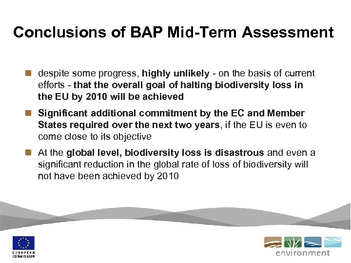 Conclusions of BAP Mid-Term Assessment n despite some progress, highly unlikely - on the