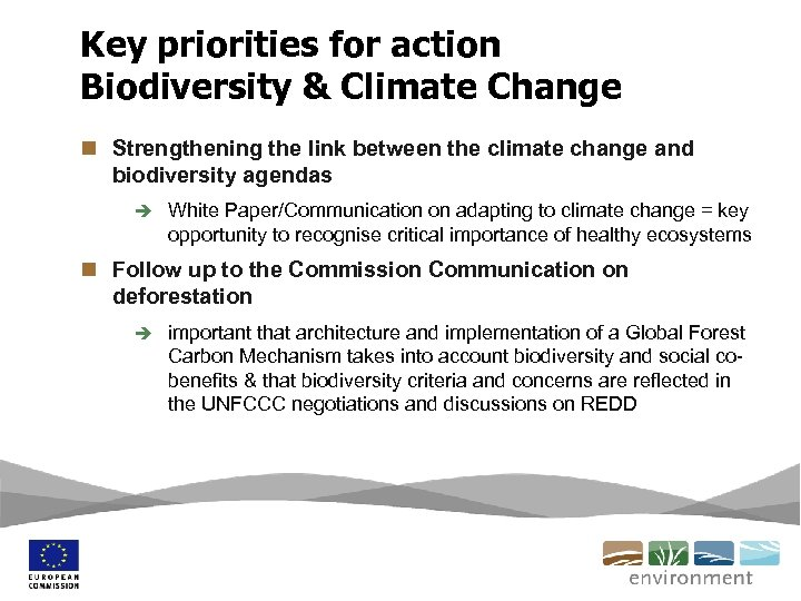 Key priorities for action Biodiversity & Climate Change n Strengthening the link between the