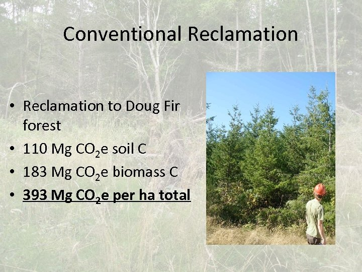 Conventional Reclamation • Reclamation to Doug Fir forest • 110 Mg CO 2 e
