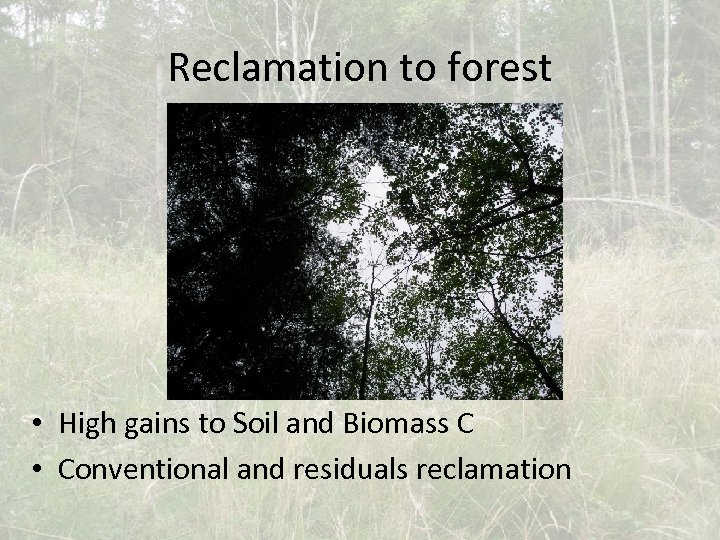 Reclamation to forest • High gains to Soil and Biomass C • Conventional and