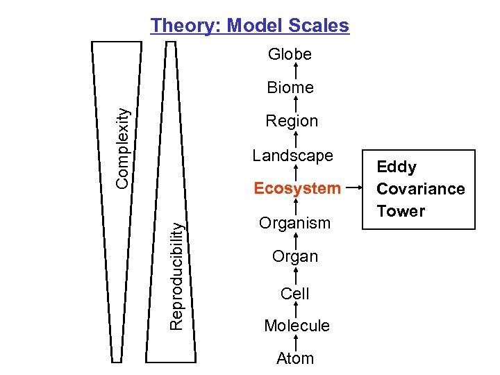 Theory: Model Scales Globe Complexity Biome Region Landscape Reproducibility Ecosystem Organism Organ Cell Molecule