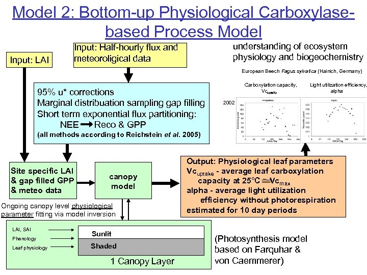 Model 2: Bottom-up Physiological Carboxylasebased Process Model Input: LAI understanding of ecosystem physiology and