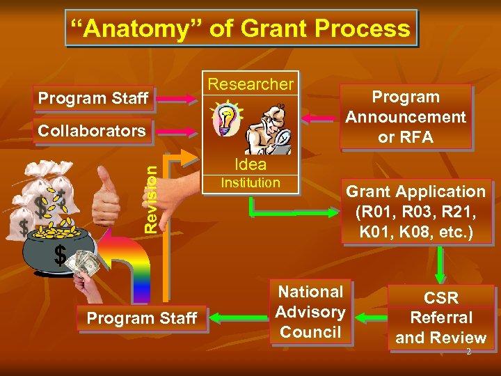 """""""Anatomy"""" of Grant Process Program Staff Researcher Revision Collaborators Program Announcement or RFA Idea"""