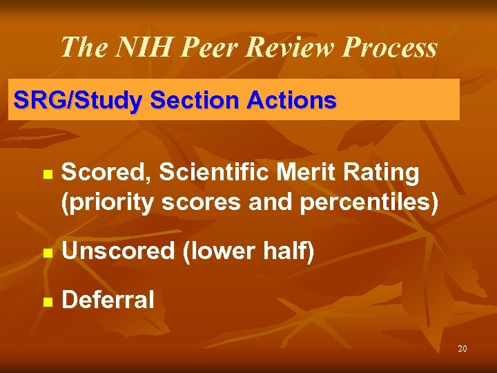 The NIH Peer Review Process SRG/Study Section Actions n Scored, Scientific Merit Rating (priority
