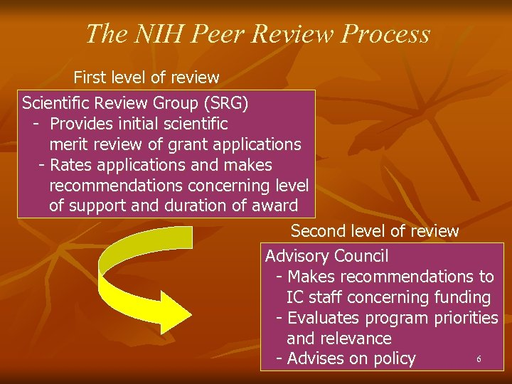 The NIH Peer Review Process First level of review Scientific Review Group (SRG) -