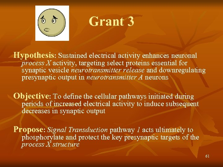 Grant 3 Hypothesis: Sustained electrical activity enhances neuronal process X activity, targeting select proteins