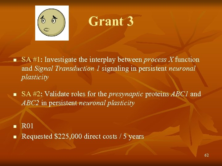 Grant 3 n n SA #1: Investigate the interplay between process X function and