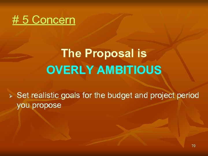 # 5 Concern The Proposal is OVERLY AMBITIOUS Ø Set realistic goals for the