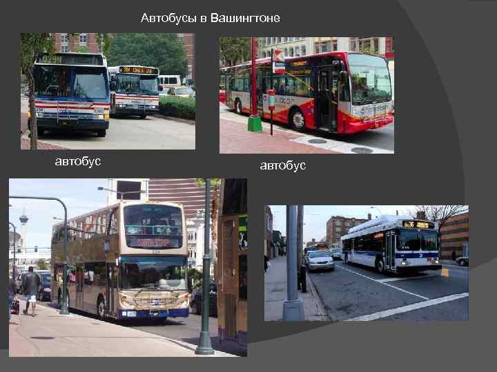 Автобусы в Вашингтоне автобус