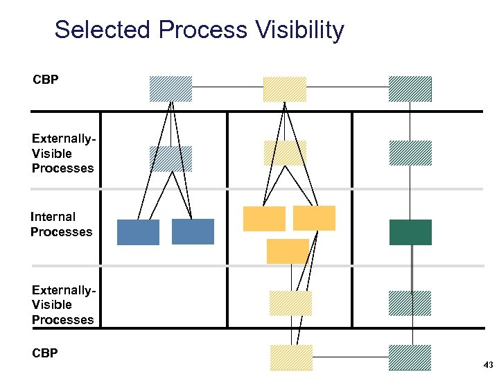 Selected Process Visibility CBP Externally. Visible Processes Internal Processes Externally. Visible Processes CBP 43