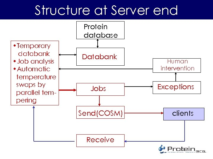 Structure at Server end Protein database • Temporary databank • Job analysis • Automatic