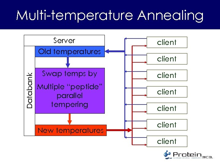 "Multi-temperature Annealing Databank Server Old temperatures client Swap temps by client Multiple ""peptide"" parallel"