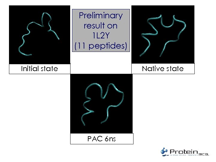 Preliminary result on 1 L 2 Y (11 peptides) Native state Initial state PAC