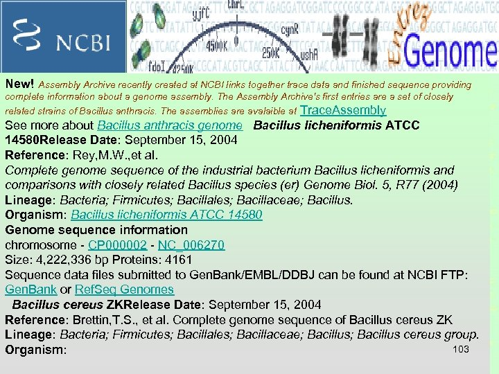 New! Assembly Archive recently created at NCBI links together trace data and finished sequence