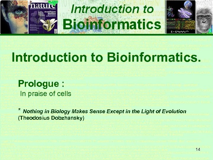 Introduction to Bioinformatics. Prologue : In praise of cells * Nothing in Biology Makes