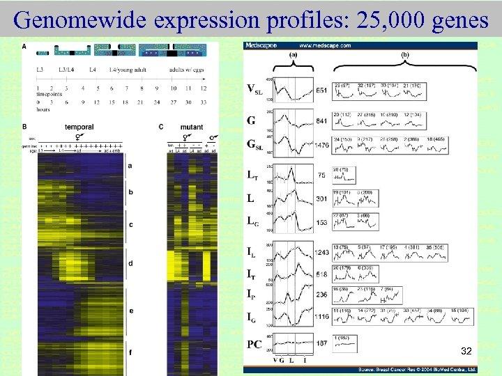 Genomewide expression profiles: 25, 000 genes 32