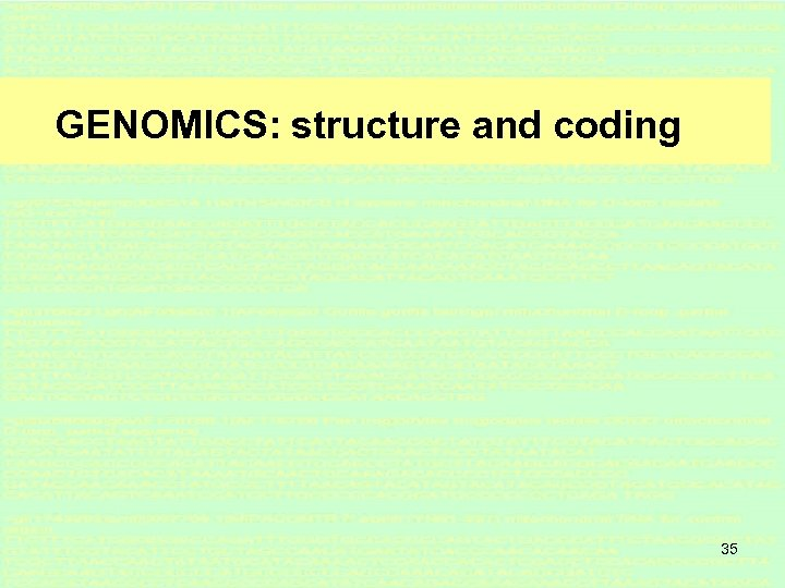 GENOMICS: structure and coding 35