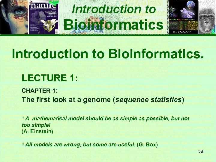 Introduction to Bioinformatics. LECTURE 1: CHAPTER 1: The first look at a genome (sequence